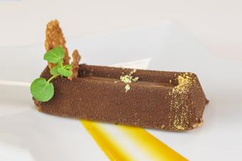 Pure chocolade & caramel brique